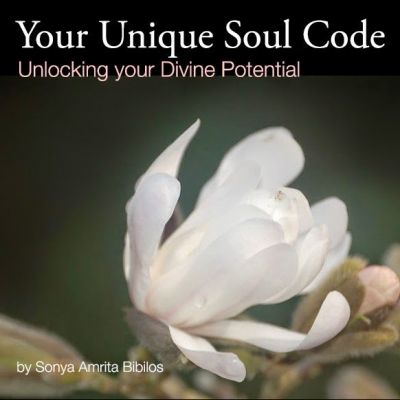 your unique soul code