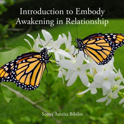 Embody Awakening in Relationship