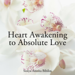 Heart Awakening to Absolute Love