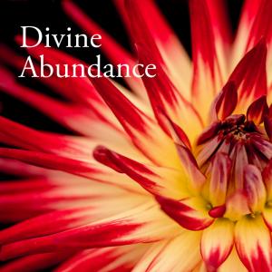 Divine_Abundance_Album_Cover