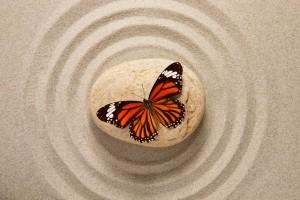 bigstock-Zen-stone-with-butterfly-46356766