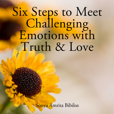 Six Steps to Meet Challenging Emotions With Truth and Love Ebook